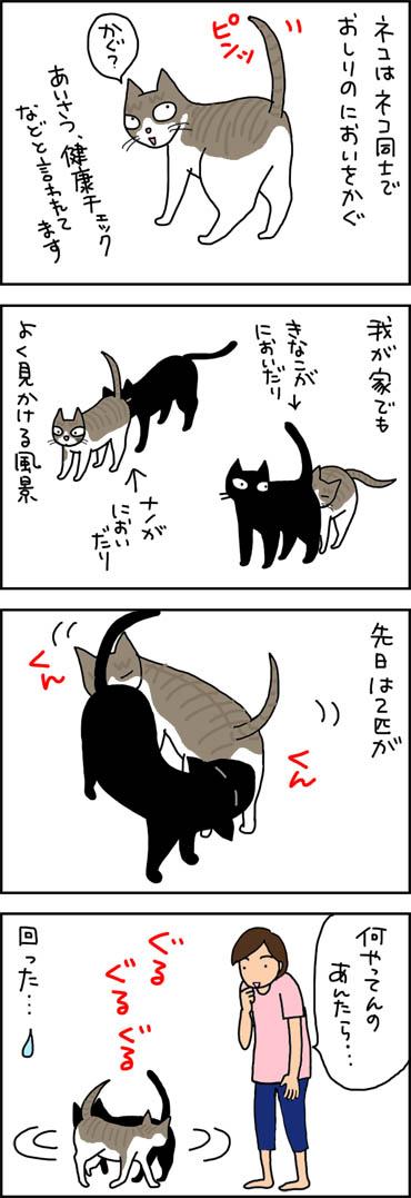 お尻の臭いを嗅ぐ4コマ猫漫画