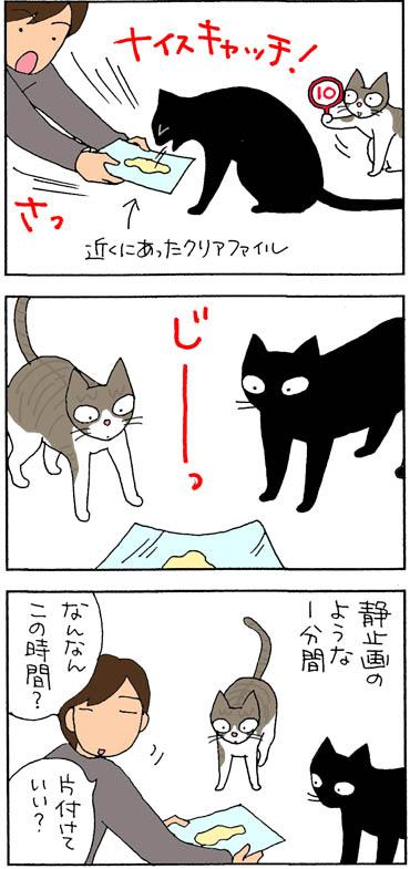 吐いて固まる猫の4コマ漫画