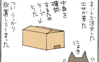 エサの袋を破るネコの4コマ漫画