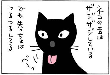 ネコの舌はざらざらの4コマ猫漫画