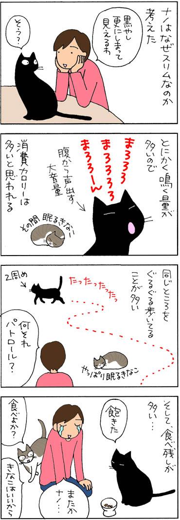 よく鳴く猫の4コマ猫漫画