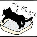 猫を叱る4コマ猫漫画