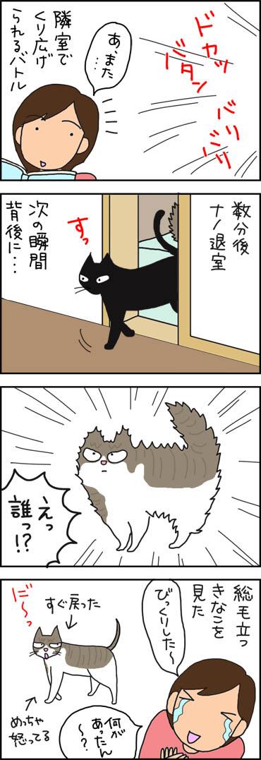膨れるネコの4コマ猫漫画
