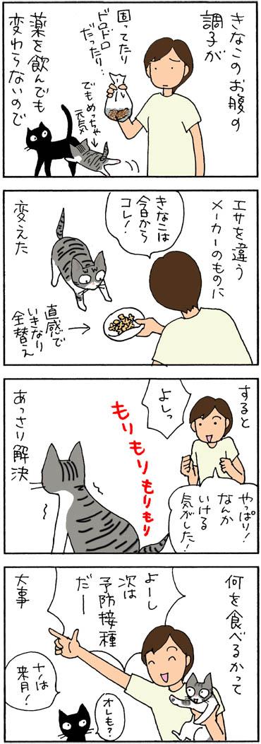エサでお腹の調子が変わった4コマ猫漫画