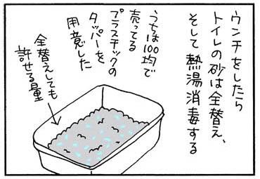 コクシジウムウンチ戸の戦いの猫漫画