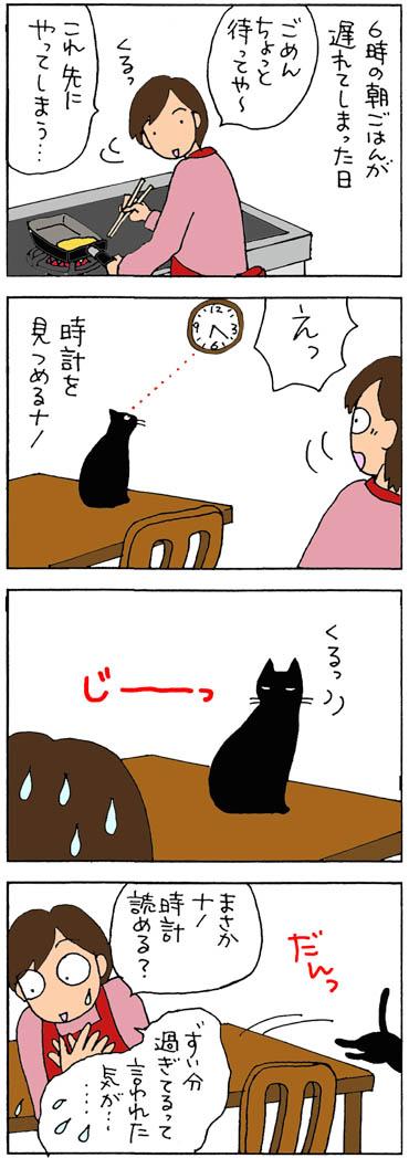 時間に正確な猫の4コマ猫漫画