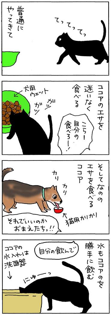 犬のエサを食べる猫の4コマ猫漫画