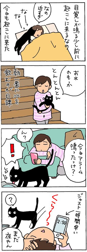 時間を間違えた4コマ猫漫画