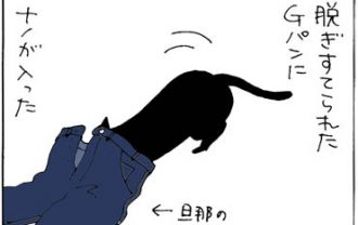 Gパンから出られない猫の猫漫画