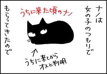 名前を呼んでも知らん顔のネコの4コマ猫漫画