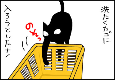 洗濯かごに入ろうとする猫の4コマ猫漫画