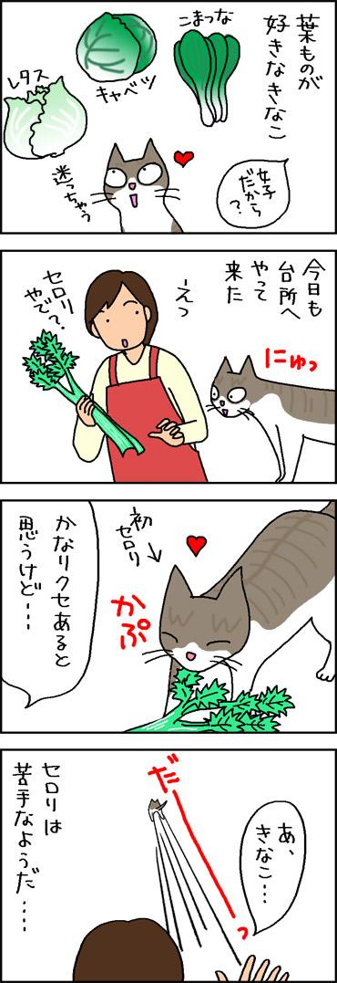 葉もの野菜が好きな猫の4コマ猫漫画