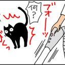 そうじ機が平気な猫の4コマ猫漫画