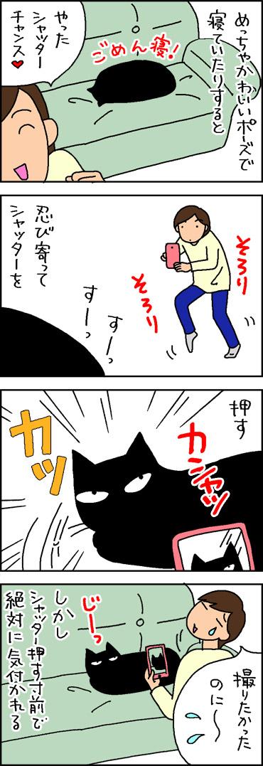 猫にカメラを向けるとこうなる4コマ猫漫画