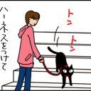 猫にハーネスをつけて外にいるとこうなる4コマ猫漫画