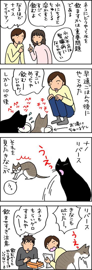 猫の水のみ対策の4コマ猫漫画