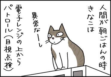 息子の下僕化が止まらない4コマ猫漫画