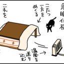 実は学習能力が高いネコの4コマ漫画