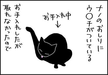 取れないウンチをあったかいガーゼで拭く4コマ猫漫画