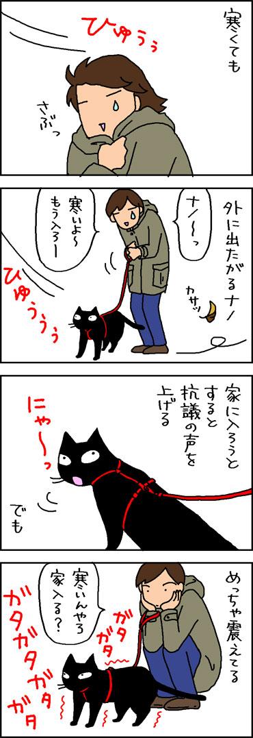 寒い日にも散歩する猫の4コマ猫マンガ