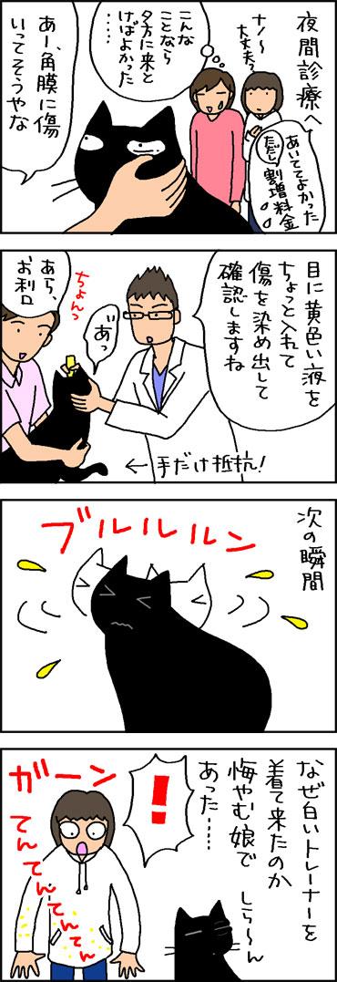 目を怪我した猫の4コマ猫まんが