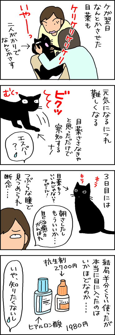 猫の目薬が残った4コマ猫漫画