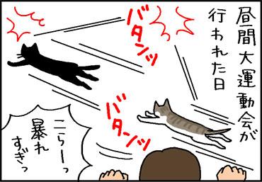 目を怪我した猫の4コママンガ