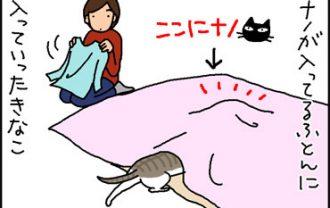 布団の中に入った2匹の4コマ猫漫画