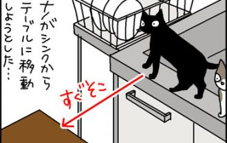 短い距離もジャンプしない猫の4コマ猫漫画