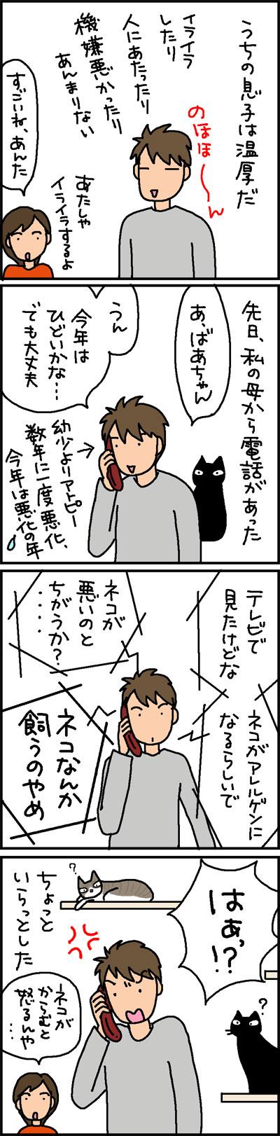 怒らない息子が怒った4コマ猫漫画