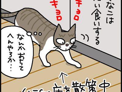 広い食いして内ととぼけるネコの4コマ猫漫画