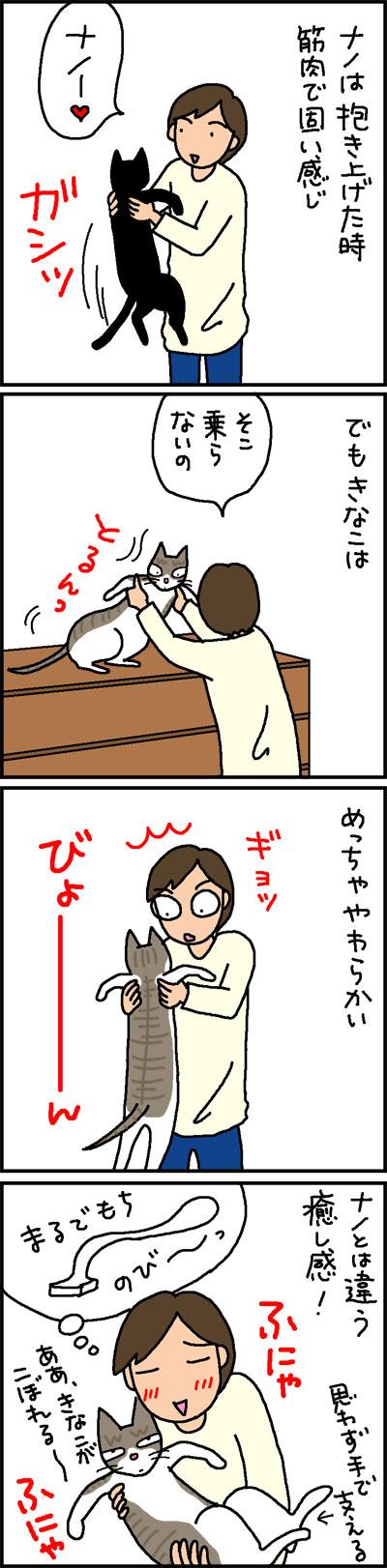 固い猫と柔らかい猫の4コマ猫漫画