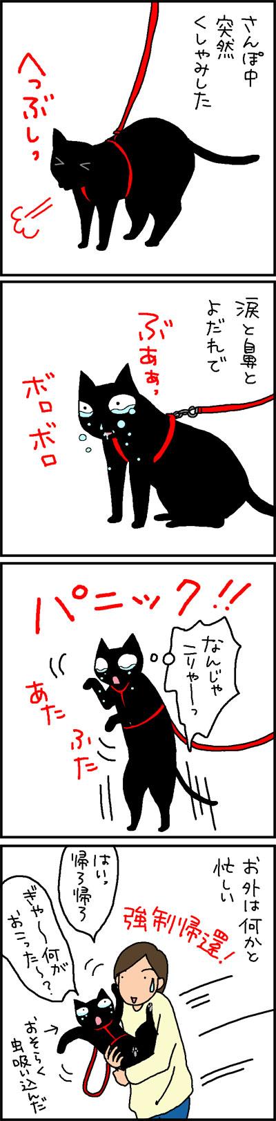 散歩中にパニックになる猫の4コマネコ漫画