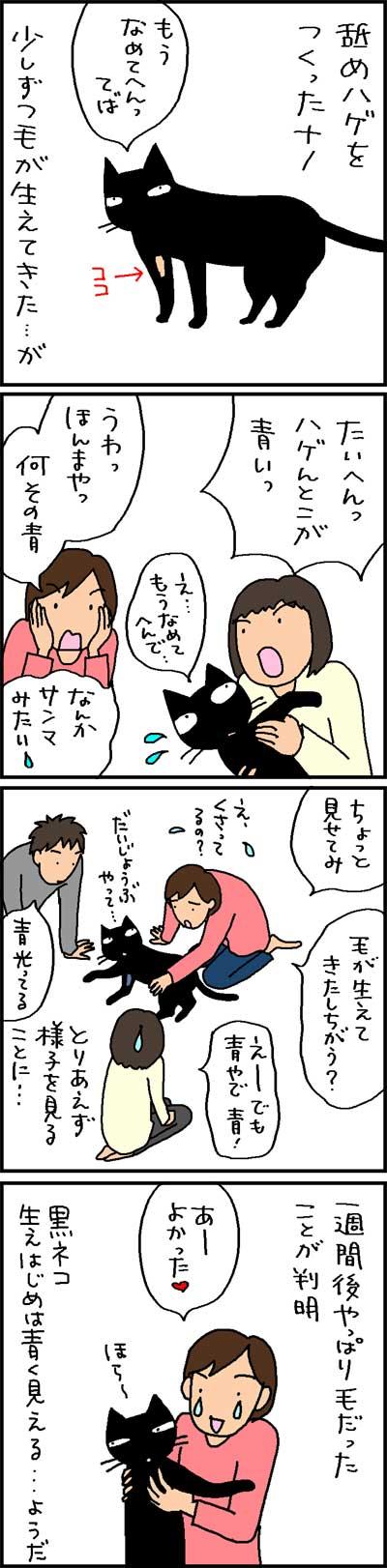 黒猫の毛の生えはじめの4コマネコ漫画