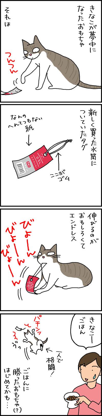 水筒のタグで遊ぶ猫の4コマ猫漫画