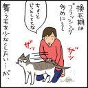 巻き散らす猫毛の4コマ猫漫画