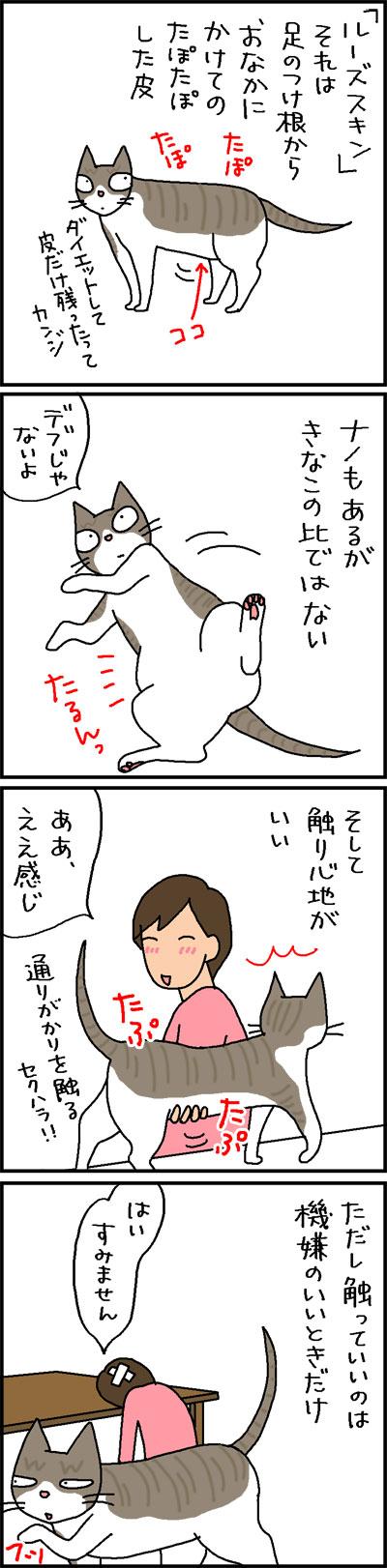 猫のルーズスキンは触り心地がいい4コマネコ漫画
