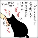 2匹の猫を甘えさせるのって難しい4コマ猫漫画