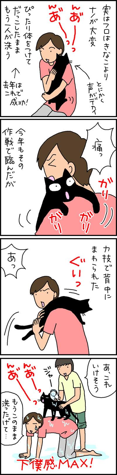 猫をシャンプーする4コマ猫漫画