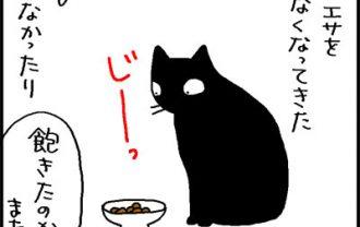 エサを食べなくなった猫の4コマ猫漫画