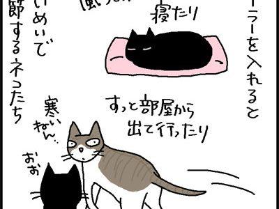 クーラーのきいた部屋とそうでない部屋での過ごし方の4コマ猫漫画