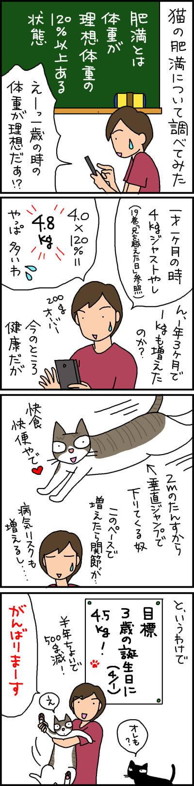 猫のダイエット適正体重を求める4コマ猫漫画