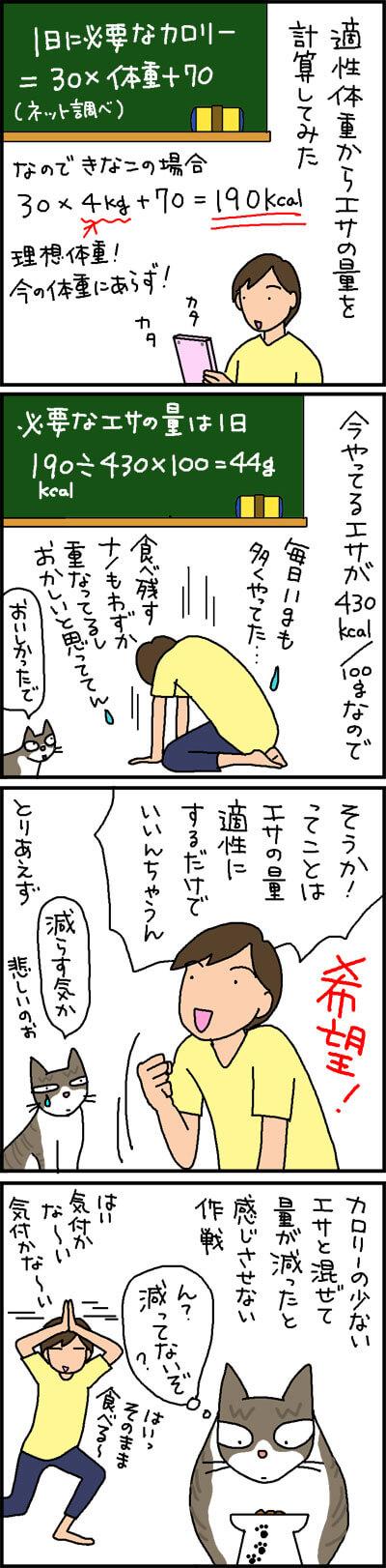 猫のダイエット1日の必要量を求める4コマ猫漫画