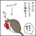 きなこの水分補給の4コマ猫漫画