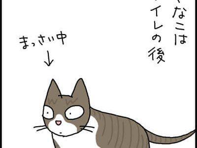 砂かきする猫の4コマ猫漫画