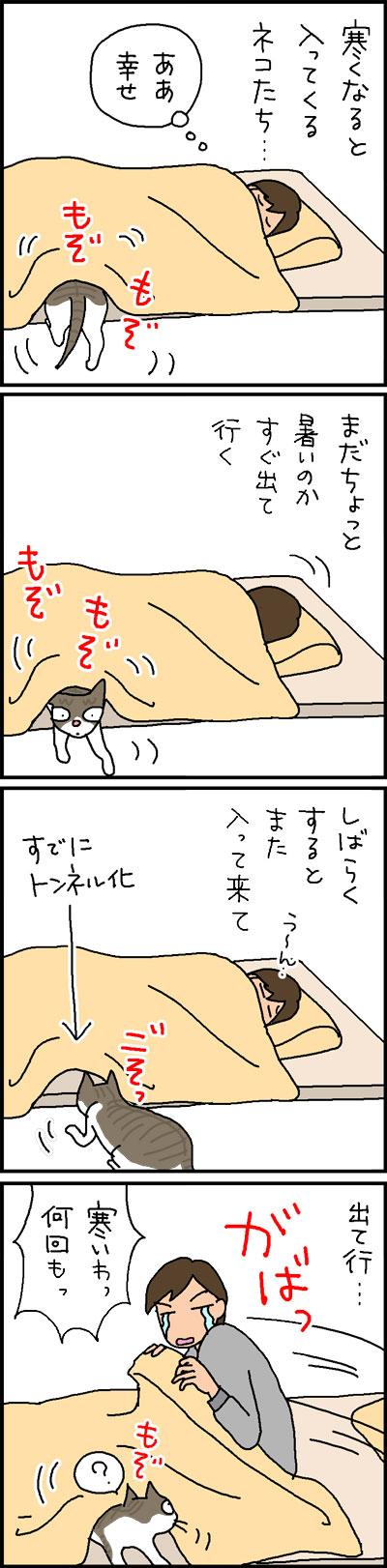 布団の中に入る猫の4コマ猫漫画