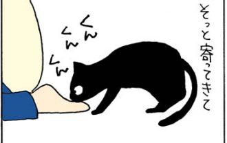 足を噛む猫の4コマ猫漫画