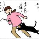 狩りに向かない猫の4コマ猫漫画
