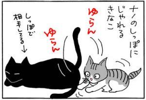 怒られても突進する子猫の4コマ猫漫画
