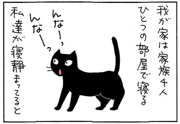 安否確認する猫の4コマ猫漫画